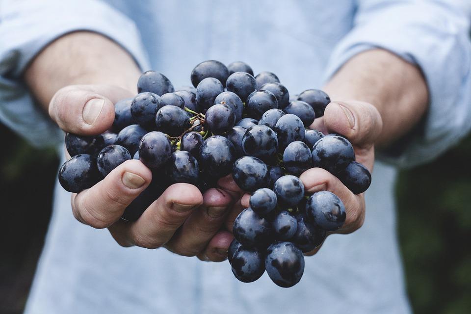 bien-fait-raisin